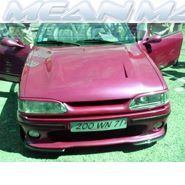 Renault 19 Light Brows